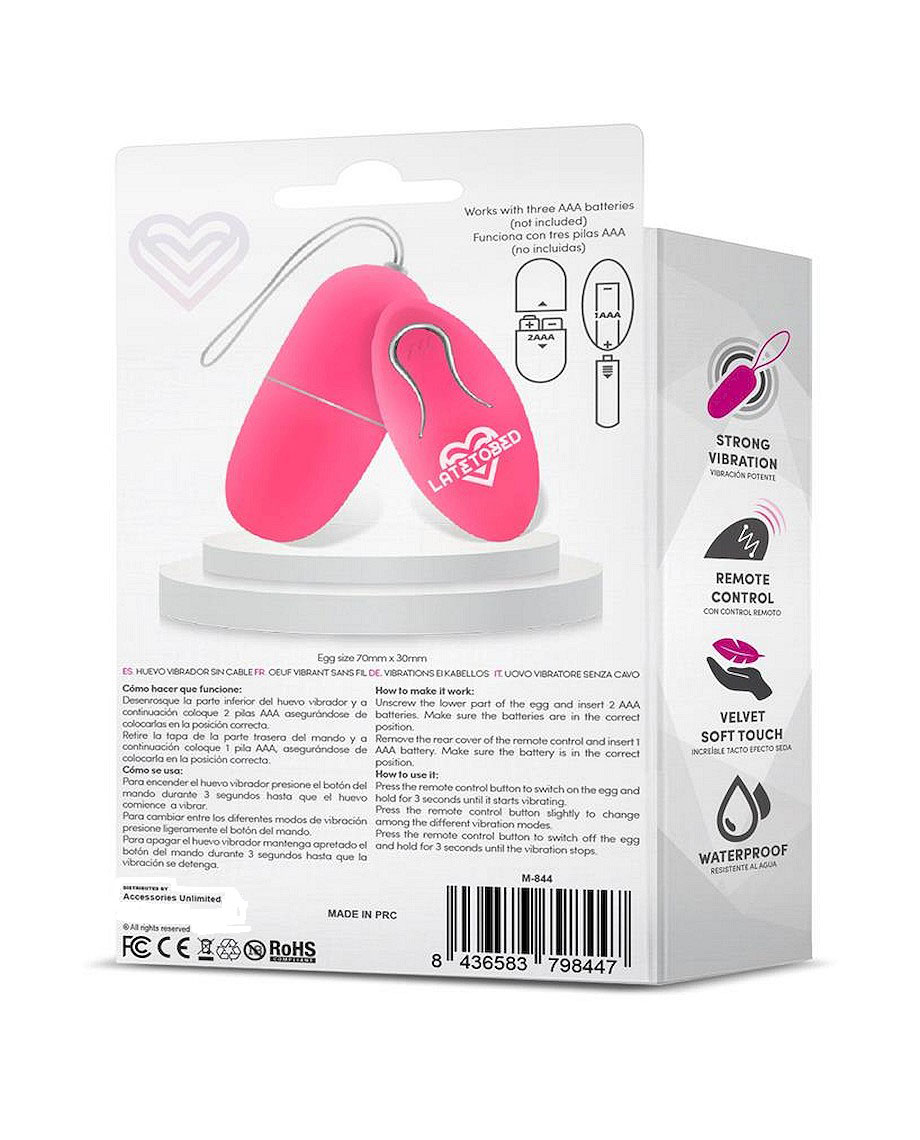 EcoPink Vibrating Egg with Remote Control